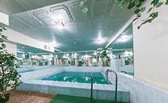 Сауна с теплым бассейном Киев